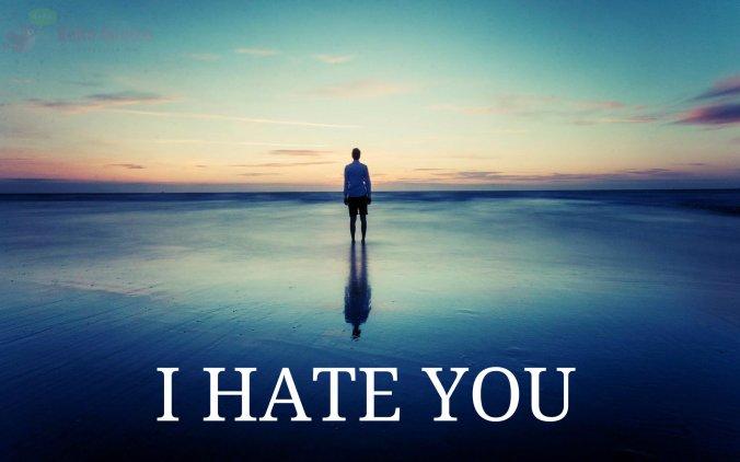 I hate YOu.jpg